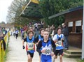 Cross de Saintes (41)